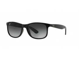 Ray-Ban ANDY RB4202 601/8G 55
